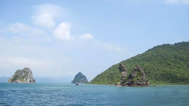 越南旅游:走访白子龙国家级自然保护区 hinh anh 1