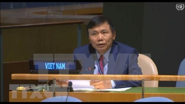 越南呼吁取消单方面强制性措施 hinh anh 1