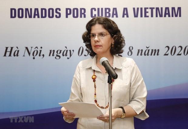 越南古巴团结情谊:国际关系的典范 hinh anh 1