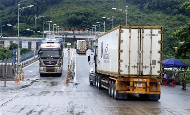 越南加大出口中国商品监督检查力度 密切配合进口商确保出口畅通 hinh anh 1