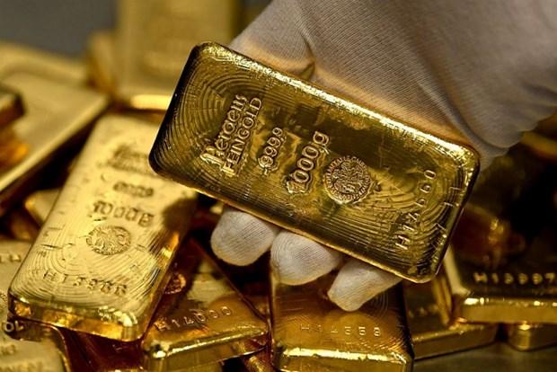 今日上午越南国内黄金价格逆转上涨 每两超过5400万越盾 hinh anh 1