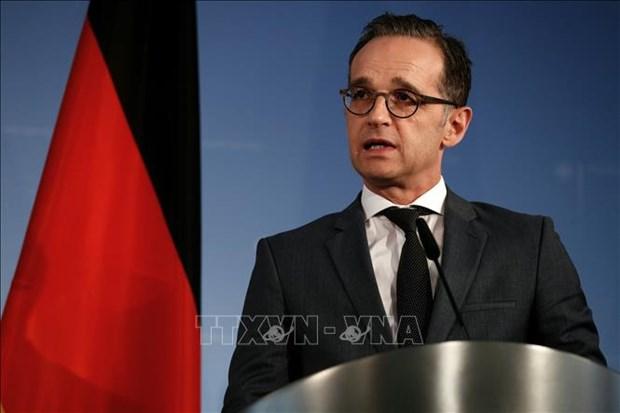 德国外长海科·马斯:越南对欧盟确定与亚洲合作方向起着举足轻重的作用 hinh anh 1
