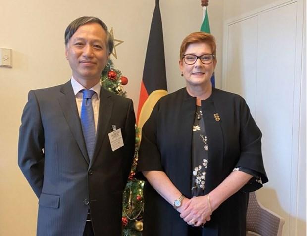澳外长佩恩:越澳在多个领域上成为彼此的重要合作伙伴 hinh anh 1