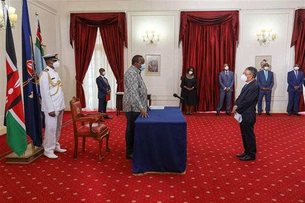 巩固越南与肯尼亚关系 hinh anh 1