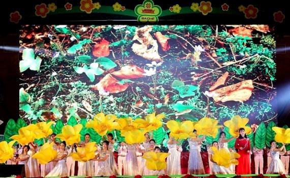 广宁省为刺激旅游需求而举办各种各样节日活动 hinh anh 2