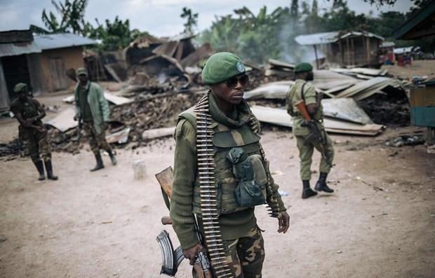 越南与联合国安理会:越南愿为非洲冲突后国家提供支持 hinh anh 1