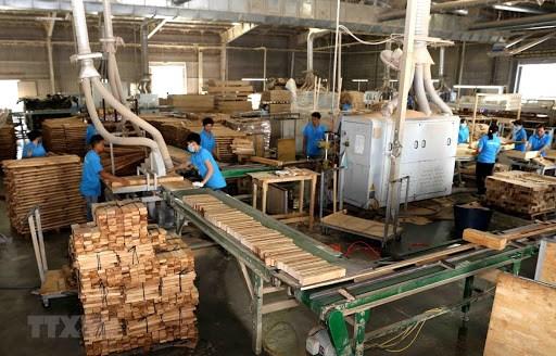 越南力争到2025年木材和林产品出口额达180亿至200亿美元 hinh anh 1