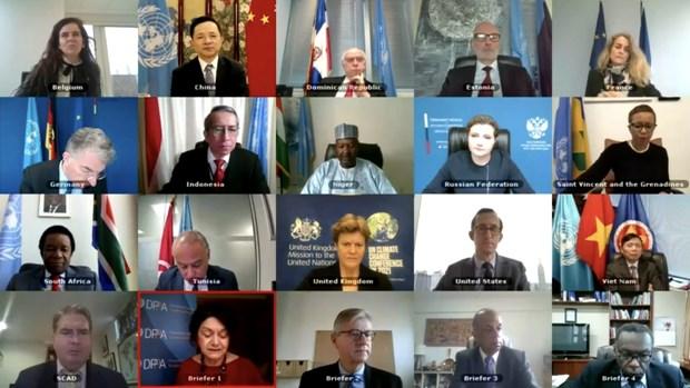 越南与印度尼西亚支持苏丹政治过渡进程 hinh anh 1