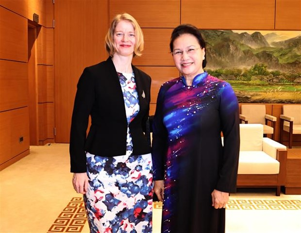越南国会主席阮氏金银会见新西兰、智利和印尼驻越大使 hinh anh 1