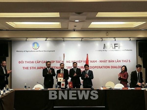 越南与日本签署农业合作中长期愿景 hinh anh 1