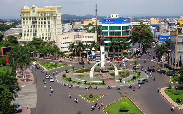 越南得乐省完成或超额完成2020年度14项经济社会发展指标 hinh anh 1