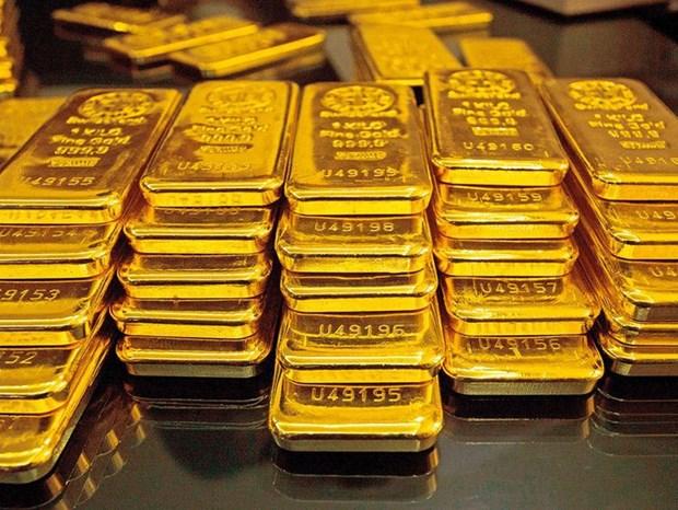 14日上午越南国内市场黄金价格保持在每两5500万越盾以上 hinh anh 1