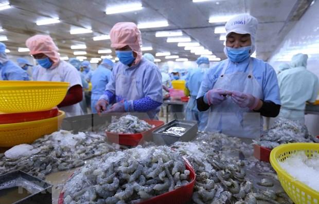 """澳大利亚研究报告:越南是澳大利亚的""""完美经济合作伙伴"""" hinh anh 1"""