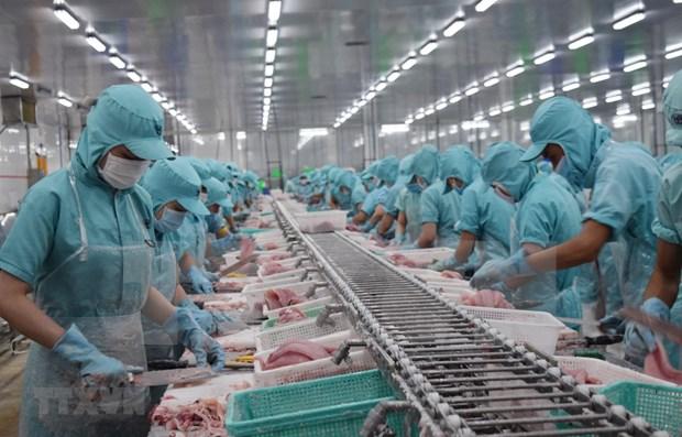 日本经济研究中心:2023年越南将成为中等偏上收入国家 hinh anh 1