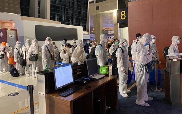 新冠肺炎疫情:将在海外滞留的近350名越南公民安全接回国 hinh anh 1