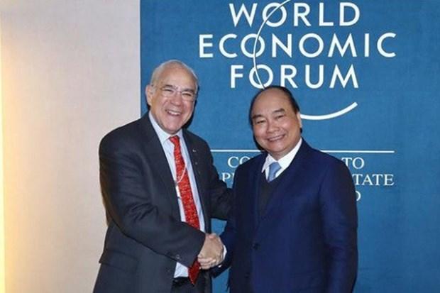 越南与经合组织合作日益走向深入和务实 hinh anh 1