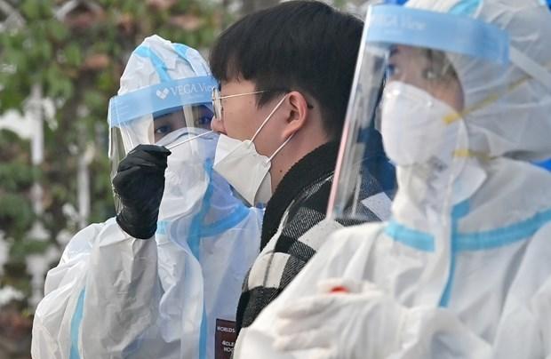 外交部例行记者会:在韩国的21名越南留学生新冠患者获得良好护理 hinh anh 1