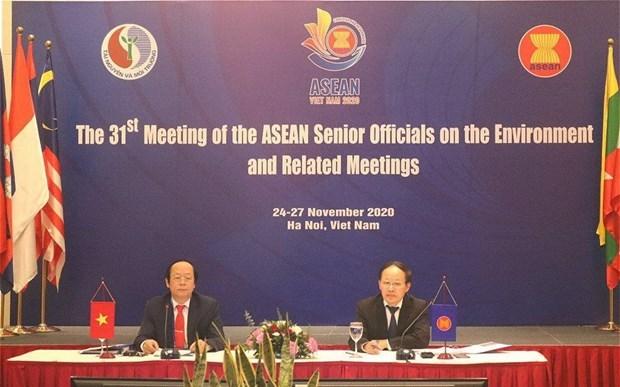 环境领域的合作日益获得东盟各国的关注 hinh anh 1
