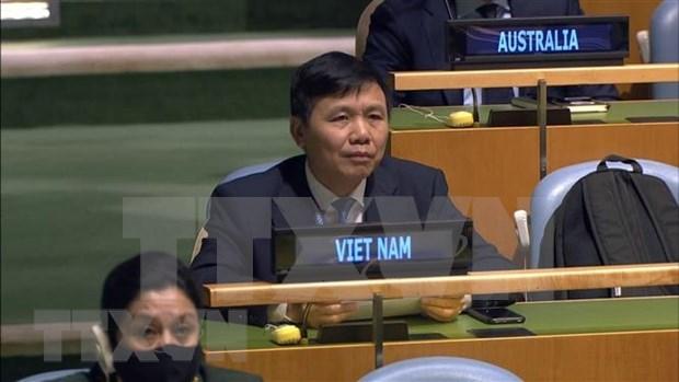越南、俄罗斯与南非共同纪念《非殖民化宣言》通过六十周年 hinh anh 1