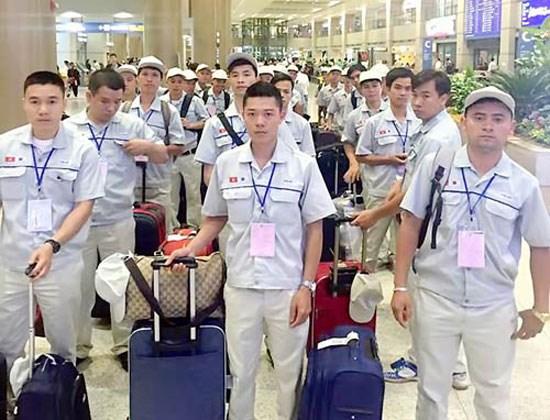 加强对在国外工作越南工人的权益保护力度 hinh anh 1