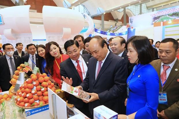 阮春福:集体经济发展必须符合人民的真正需求 hinh anh 2