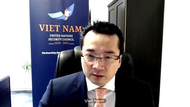 越南与联合国安理会:越南再次强调对促进中东地区裁军和不扩散核武器的支持 hinh anh 2
