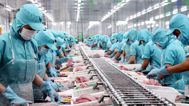 越南坚江省协助企业扩大出口市场 hinh anh 1