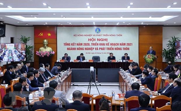 政府总理阮春福:农业行业力争到2021年出口额达440亿美元 hinh anh 2
