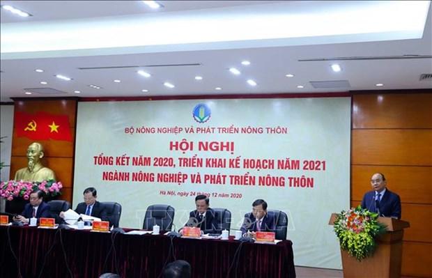 政府总理阮春福:农业行业力争到2021年出口额达440亿美元 hinh anh 1