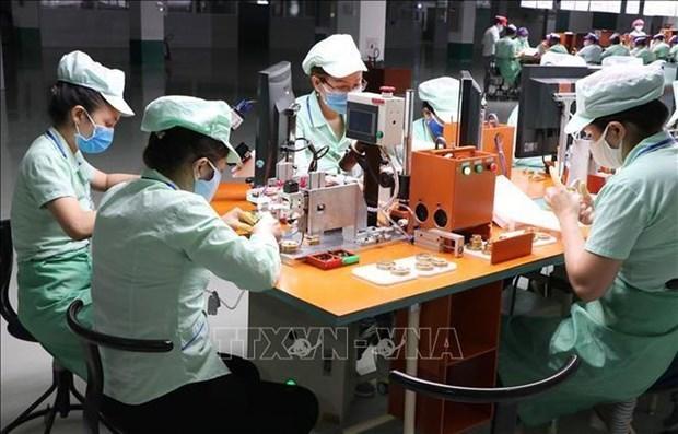 越通社评选2020年越南十大经济事件 hinh anh 8