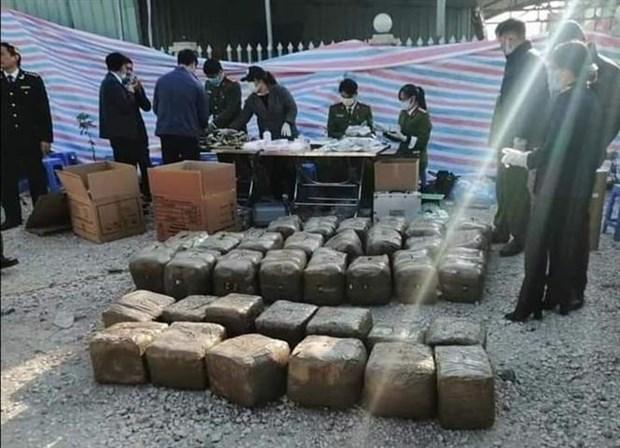 海防市发现装有超过570公斤重的疑似罂粟树脂的集装箱 hinh anh 1