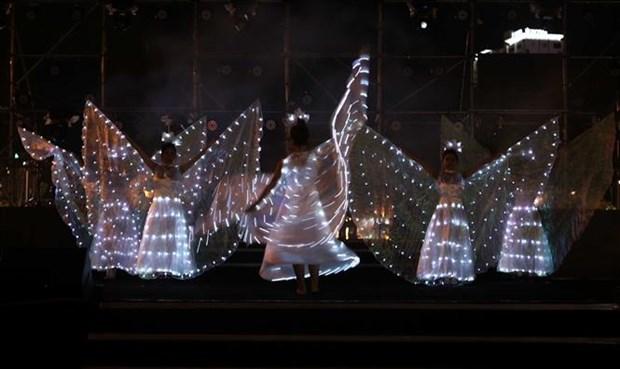 迎接2021年—神奇之夜艺术晚会在岘港市举行 hinh anh 1
