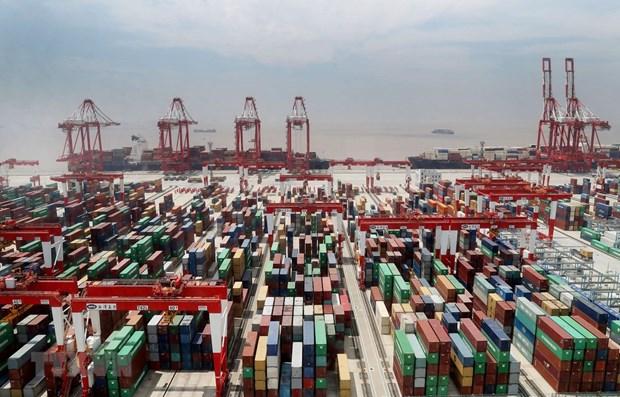 2020年前11月越南成为了上海在东盟内最大贸易伙伴 hinh anh 1