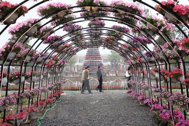 越南北部最大花卉种植区的春季花卉节芬芳开幕 hinh anh 2