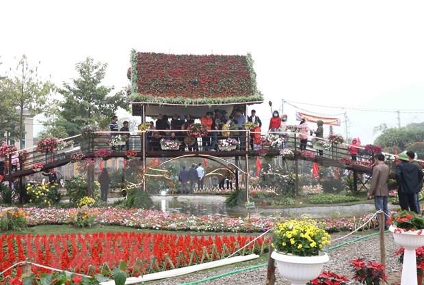 越南北部最大花卉种植区的春季花卉节芬芳开幕 hinh anh 1