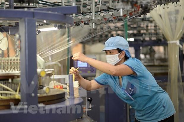越南与印度促进纺织品服装业的合作 hinh anh 2