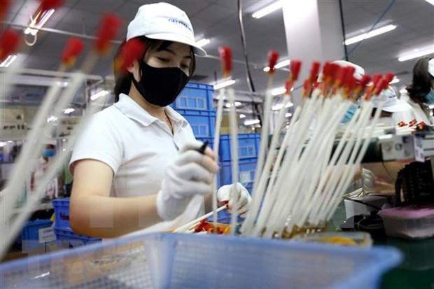 """俄专家:越南的成功可被视为2020年的""""现象"""" hinh anh 2"""