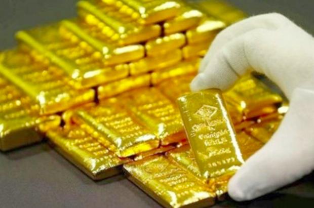 31日越南国内市场黄金价格突破5600万越盾关口 hinh anh 1