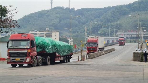 2021年伊始老街金城二号陆路国际口岸货物出口量达逾500吨 hinh anh 1