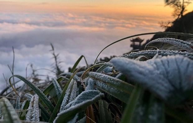 1月7日强冷空气来袭 北部和中部出现极寒天气 hinh anh 1