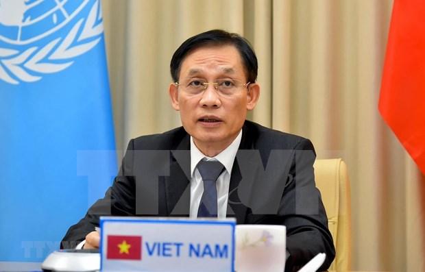 越南与联合国安理会:越南继续优先加强联合国与各地区组织之间的合作 hinh anh 1