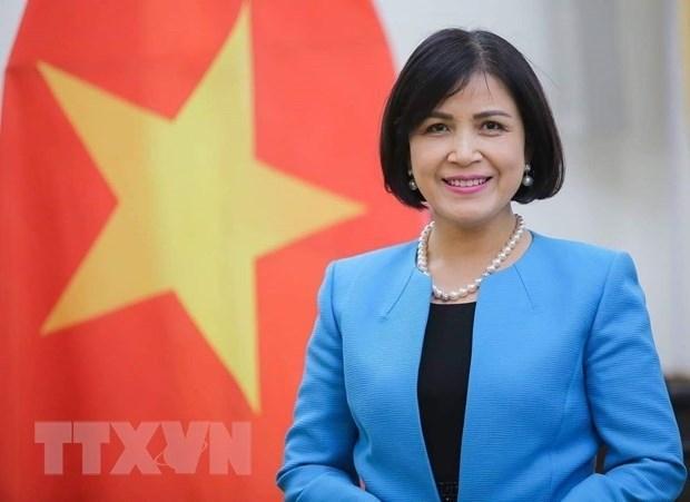 越南出席在日内瓦的世贸组织总部举行印度第7次贸易政策审查会议 hinh anh 1