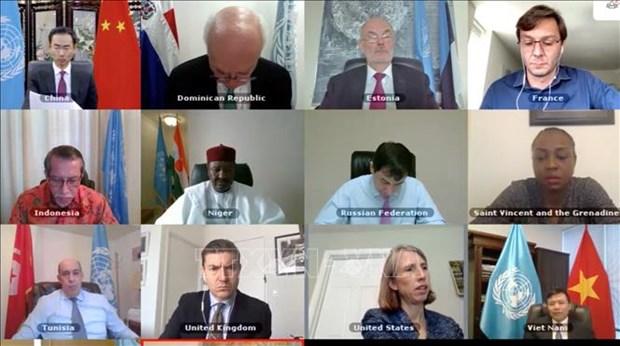 联合国安理会呼吁打击西非和萨赫勒极端恐怖与暴力 hinh anh 1