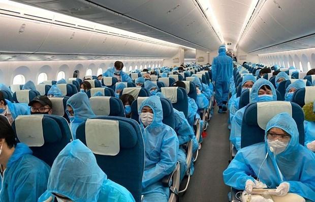暂停从英国、南非前往越南的航班 hinh anh 1