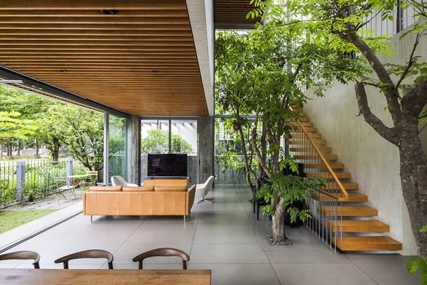 越南知名设计师武仲义住宅工程荣获DFA亚洲最具影响力设计奖 hinh anh 2