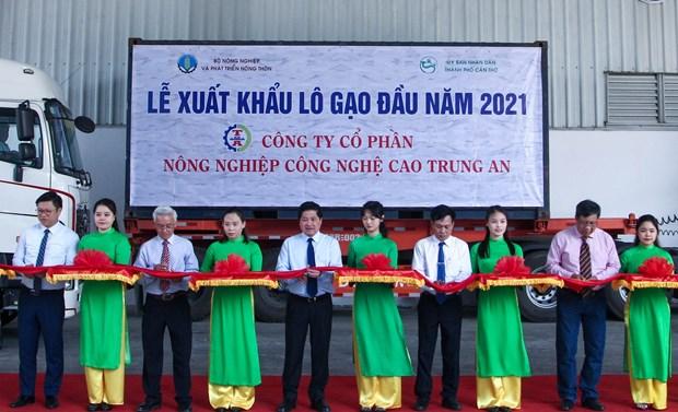 2021年初越南向新加坡和马来西亚出口1600吨大米 hinh anh 1