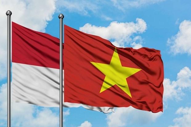 促进越南与印尼的友谊 hinh anh 1