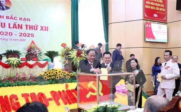 越南干部选拔任用工作一向得到党的高度重视并实现新作为 hinh anh 2