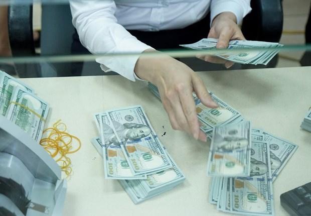 18日上午越盾对美元汇率中间价下调5越盾 hinh anh 1