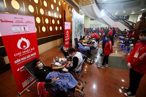 第十三届红色星期日设立80个献血点 预计累计献血量逾5万单位 hinh anh 2